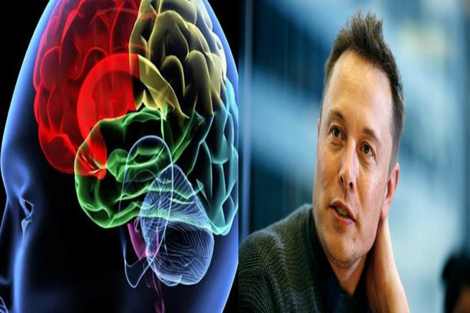 Elon Musk Is Set to Merge Human Brains with AI in Neuralink Project